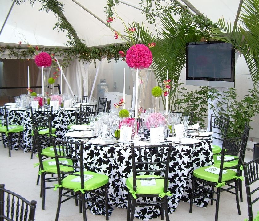 social events and party equipmant rental